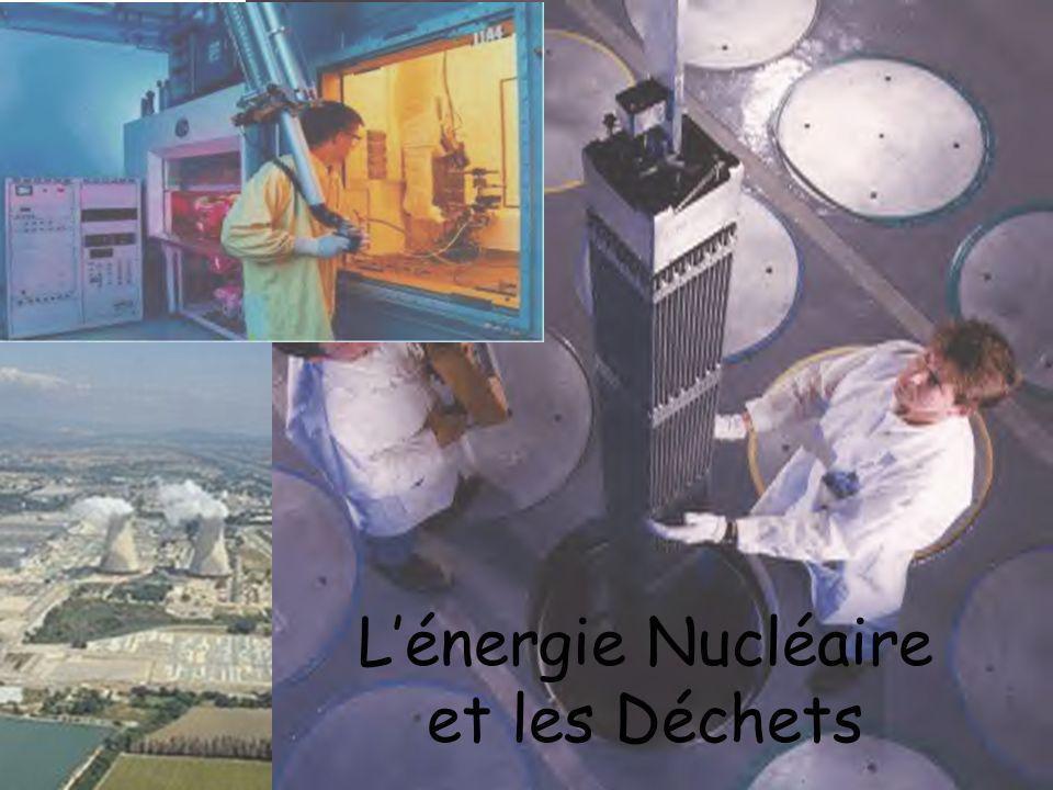 Disposés selon une géométrie précise, les assemblages de combustible forment le cœur du réacteur où ils séjournent 3 ou 4 ans.
