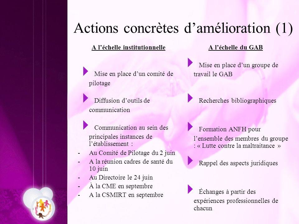 Actions concrètes damélioration (1) A léchelle institutionnelle Mise en place dun comité de pilotage Diffusion doutils de communication Communication