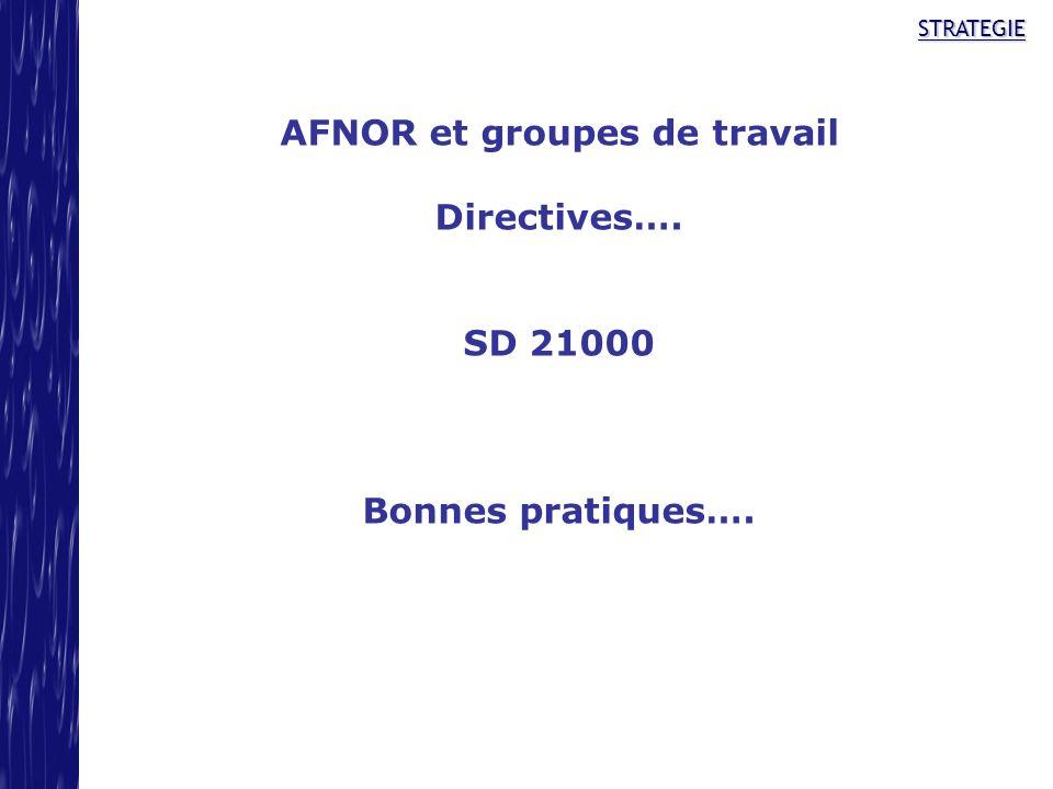 STRATEGIE AFNOR et groupes de travail Directives…. SD 21000 Bonnes pratiques….