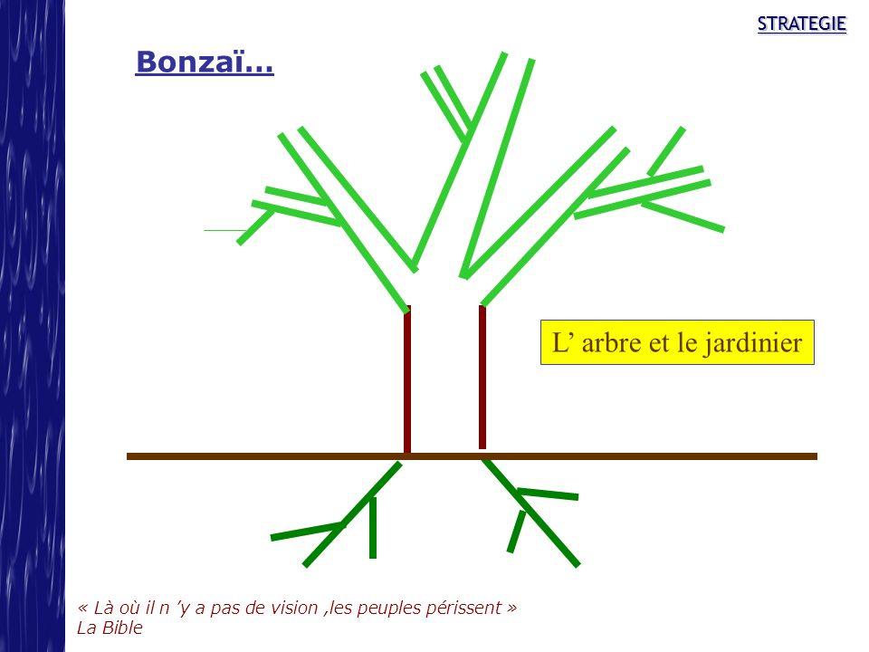 STRATEGIE « Là où il n y a pas de vision,les peuples périssent » La Bible STRATEGIE Bonzaï… L arbre et le jardinier