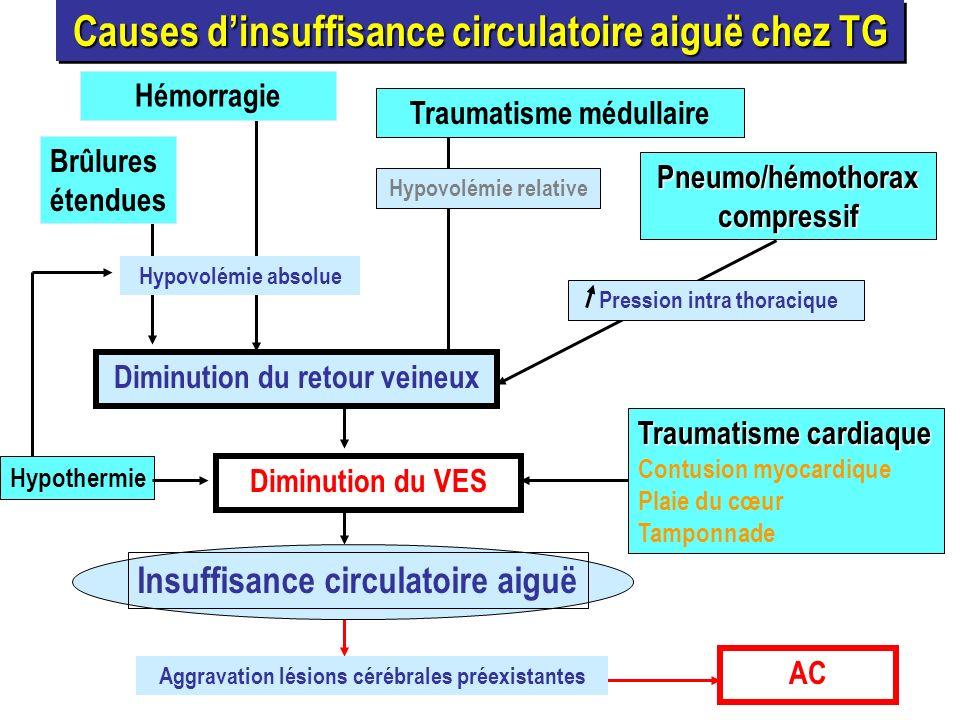 AC Aggravation lésions cérébrales préexistantes Insuffisance circulatoire aiguë Causes dinsuffisance circulatoire aiguë chez TG Hémorragie Brûlures ét