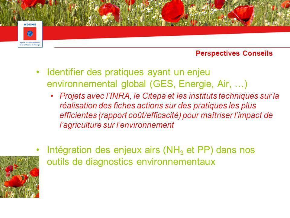 Perspectives Conseils Identifier des pratiques ayant un enjeu environnemental global (GES, Energie, Air, …) Projets avec lINRA, le Citepa et les insti