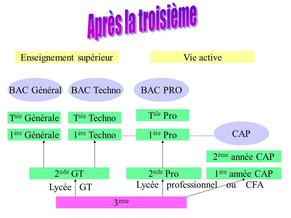 3 ème 2 nde GT2 nde Pro1 ère année CAP 2 ème année CAP 1 ère Techno1 ère Générale T ale GénéraleT ale Techno BAC GénéralBAC Techno CAP 1 ère Pro T ale