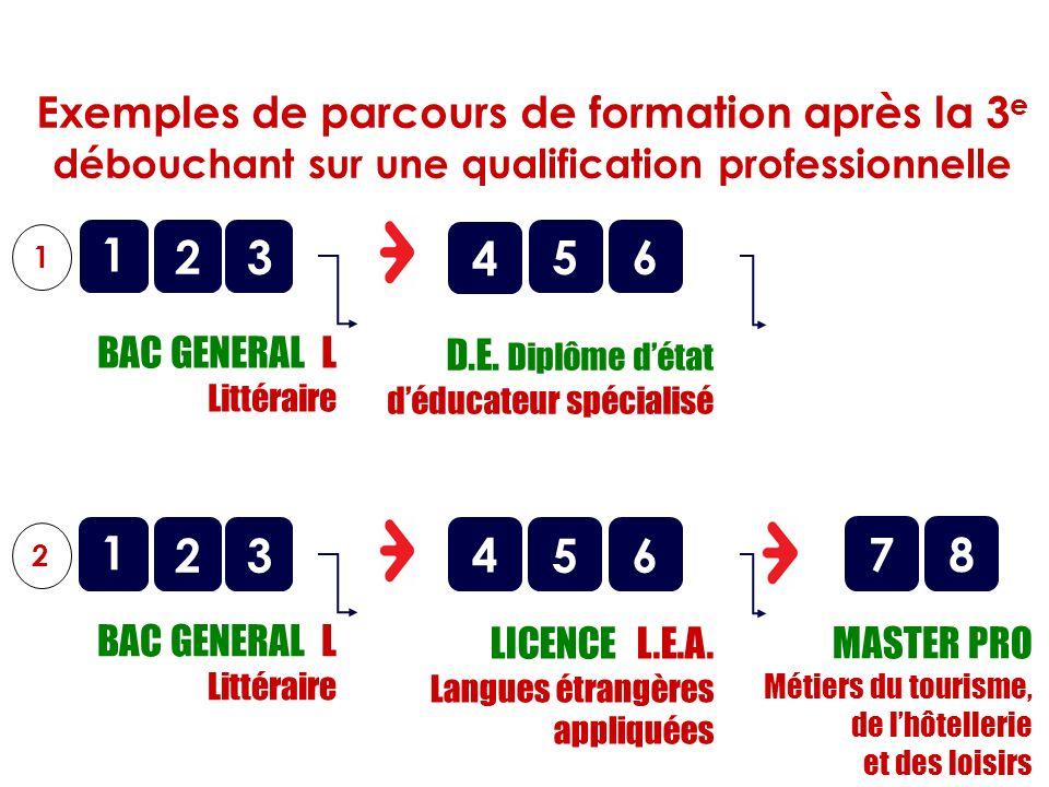 o BAC GENERAL L Littéraire 1 2 1 356 o D.E. Diplôme détat déducateur spécialisé Exemples de parcours de formation après la 3 e débouchant sur une qual