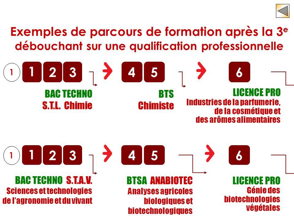 o BAC TECHNO S.T.L. Chimie 1 2 1 3456 LICENCE PRO Industries de la parfumerie, de la cosmétique et des arômes alimentaires o BTS Chimiste Exemples de