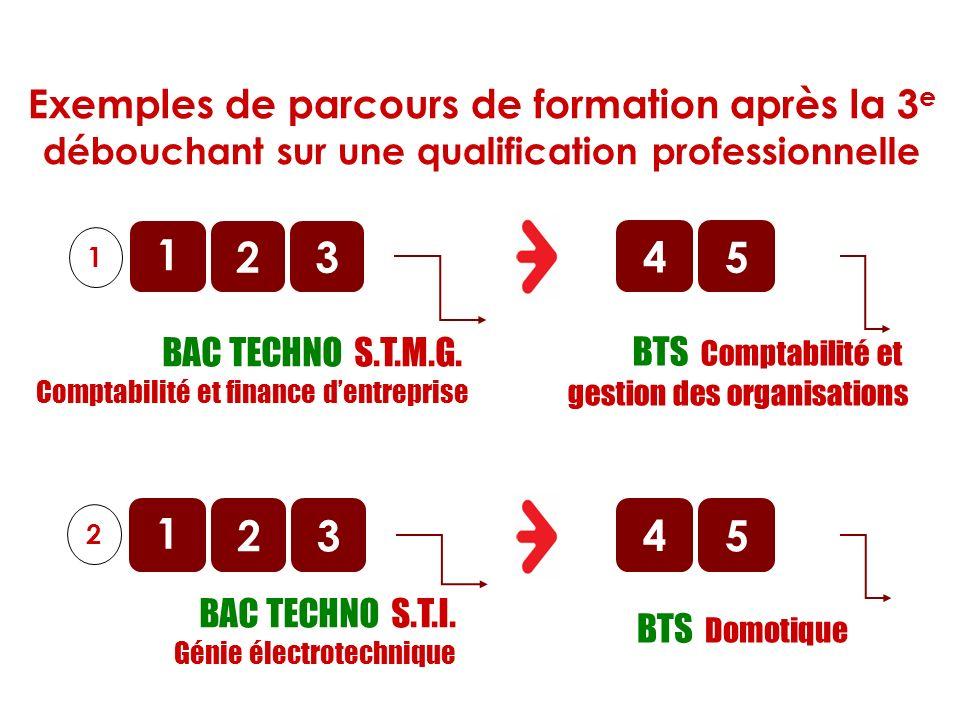 BAC TECHNO S.T.M.G. Comptabilité et finance dentreprise 1 2 1 3 BTS Comptabilité et gestion des organisations 45 BAC TECHNO S.T.I. Génie électrotechni