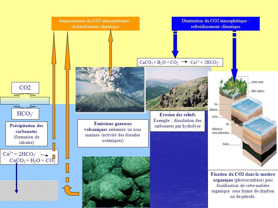 CO2 HCO 3 - Précipitation des carbonates (formation de calcaire) Ca 2+ + 2HCO 3 - CaCO 3 + H 2 O + CO 2 Emissions gazeuses volcaniques aériennes ou so
