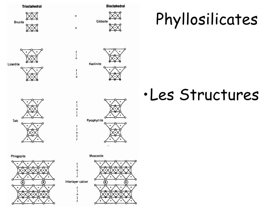 Les Structures Phyllosilicates