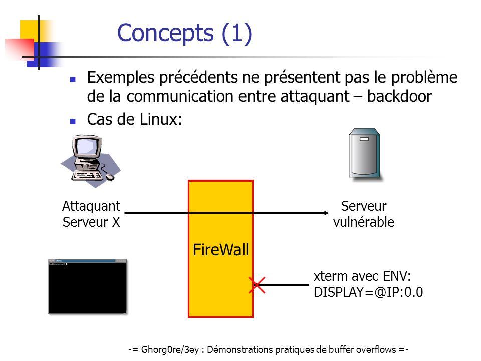 -= Ghorg0re/3ey : Démonstrations pratiques de buffer overflows =- Concepts (1) Exemples précédents ne présentent pas le problème de la communication e