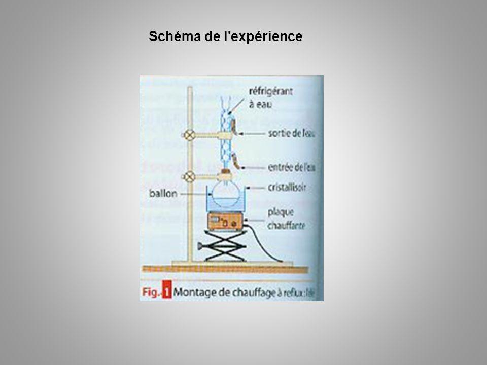 Schéma de l'expérience