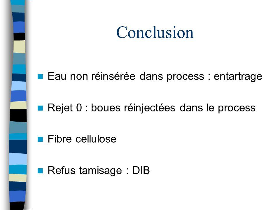Conclusion Eau non réinsérée dans process : entartrage Rejet 0 : boues réinjectées dans le process Fibre cellulose Refus tamisage : DIB