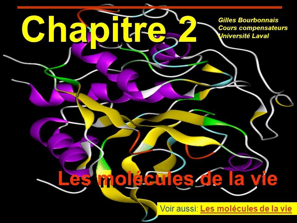 Chapitre 2 Les molécules de la vie Gilles Bourbonnais Cours compensateurs Université Laval Voir aussi: Les molécules de la vieLes molécules de la vie