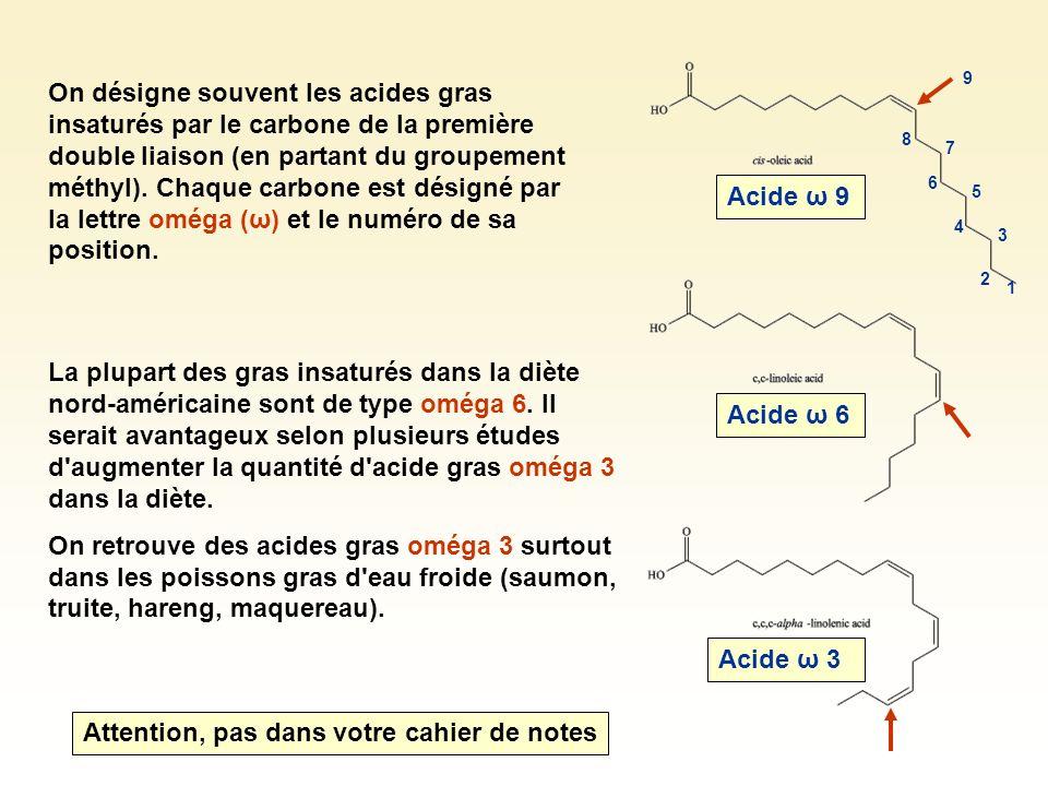 On désigne souvent les acides gras insaturés par le carbone de la première double liaison (en partant du groupement méthyl). Chaque carbone est désign