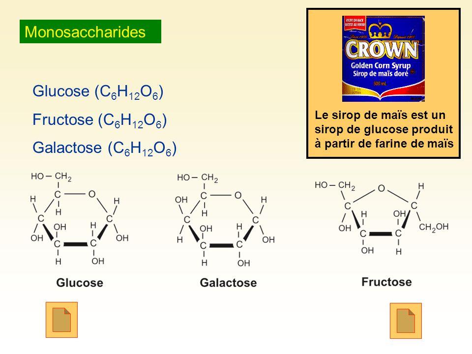 Monosaccharides Glucose (C 6 H 12 O 6 ) Fructose (C 6 H 12 O 6 ) Galactose (C 6 H 12 O 6 ) Le sirop de maïs est un sirop de glucose produit à partir d