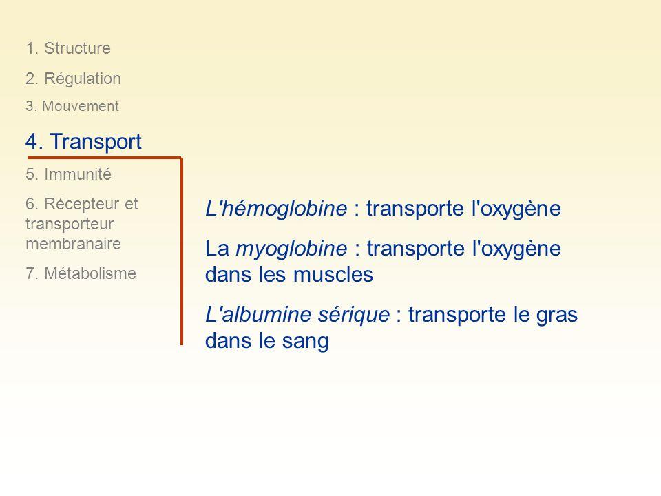 1. Structure 2. Régulation 3. Mouvement 4. Transport 5. Immunité 6. Récepteur et transporteur membranaire 7. Métabolisme L'hémoglobine : transporte l'
