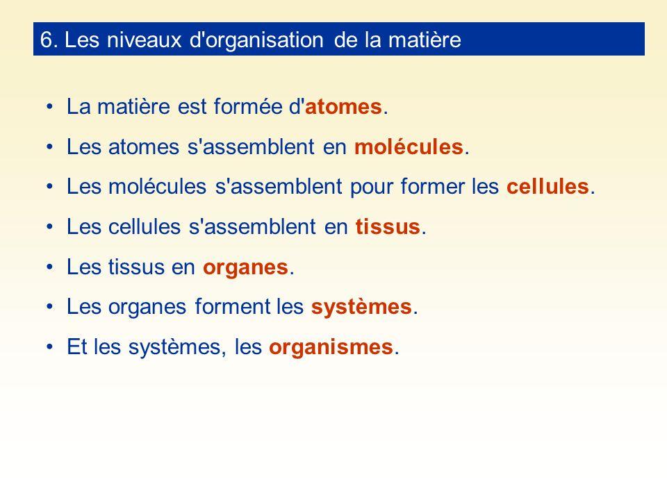 6. Les niveaux d'organisation de la matière La matière est formée d'atomes. Les atomes s'assemblent en molécules. Les molécules s'assemblent pour form