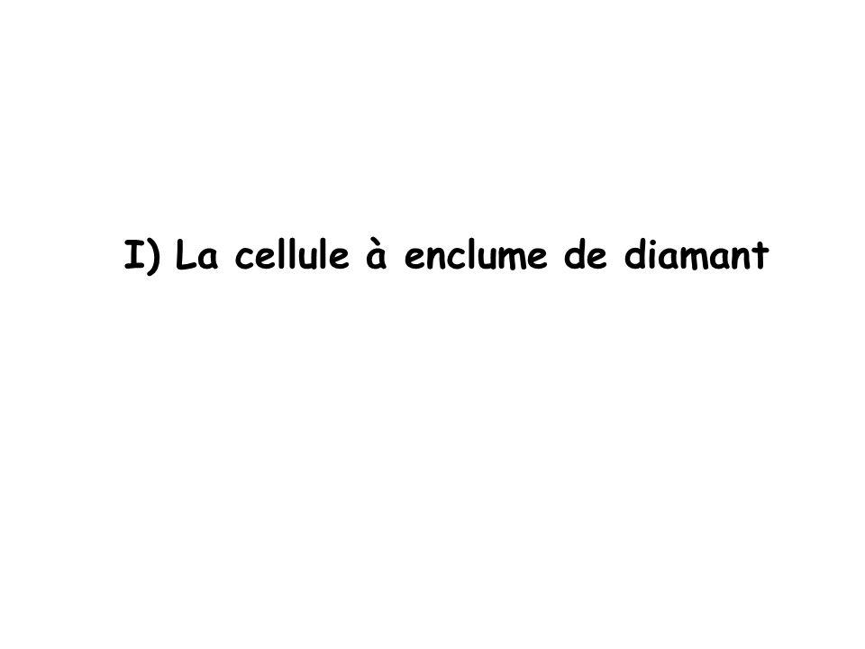 I) La cellule à enclume de diamant