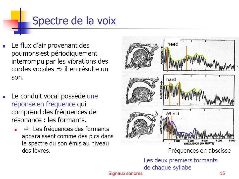 Signaux sonores15 Spectre de la voix Le flux dair provenant des poumons est périodiquement interrompu par les vibrations des cordes vocales il en résu