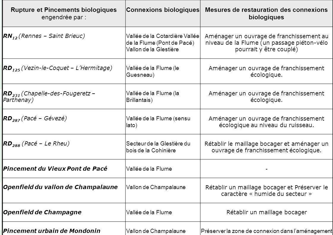 Pacé – Révision du PLU – réunion du 12 Juin 2003 Rupture et Pincements biologiques engendrée par : Connexions biologiquesMesures de restauration des c