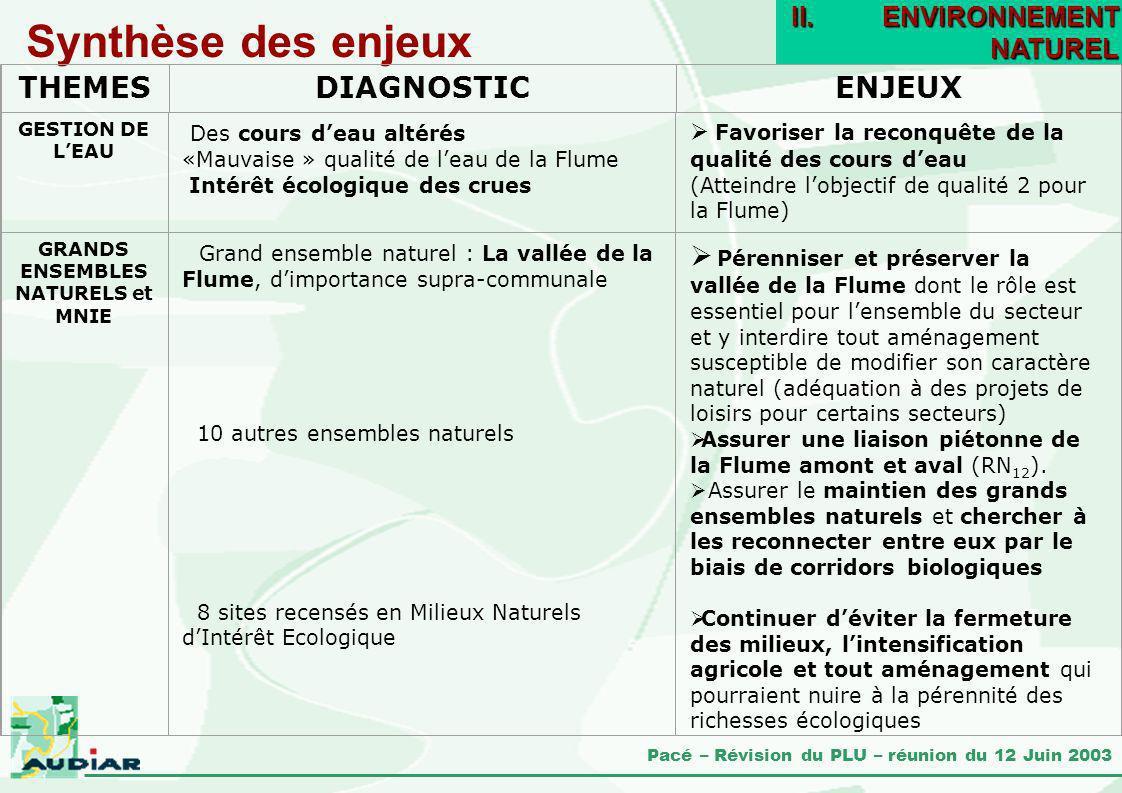 Pacé – Révision du PLU – réunion du 12 Juin 2003 Synthèse des enjeux II.ENVIRONNEMENT NATUREL GRANDS ENSEMBLES NATURELS et MNIE Grand ensemble naturel
