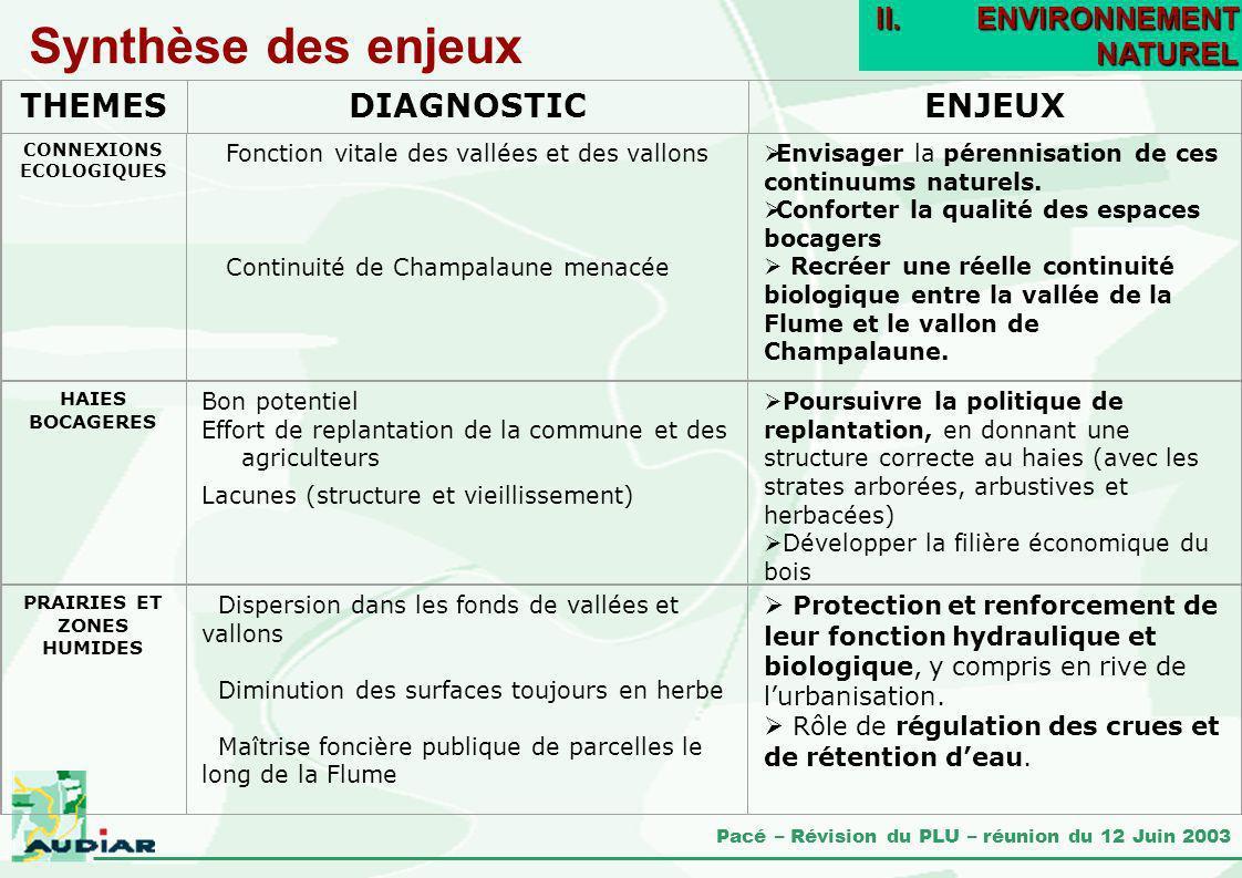 Pacé – Révision du PLU – réunion du 12 Juin 2003 CONNEXIONS ECOLOGIQUES Fonction vitale des vallées et des vallons Continuité de Champalaune menacée E