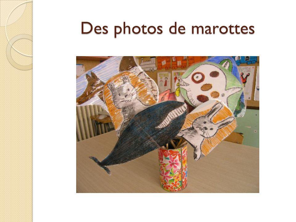 Des photos de marottes