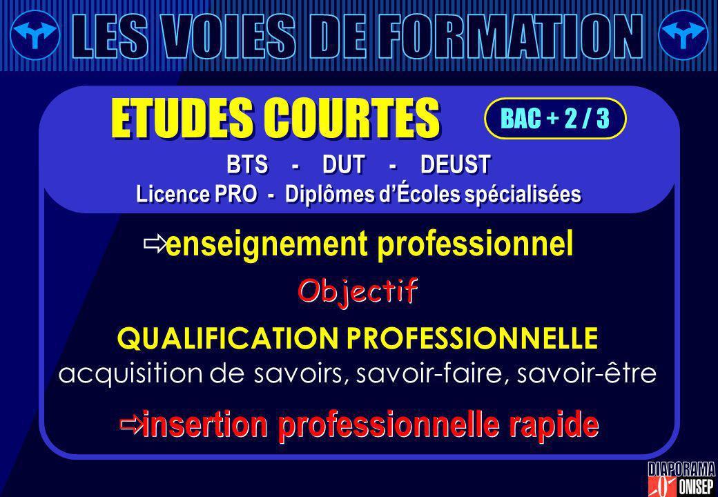 enseignement professionnel QUALIFICATION PROFESSIONNELLE acquisition de savoirs, savoir-faire, savoir-être insertion professionnelle rapide Objectif B