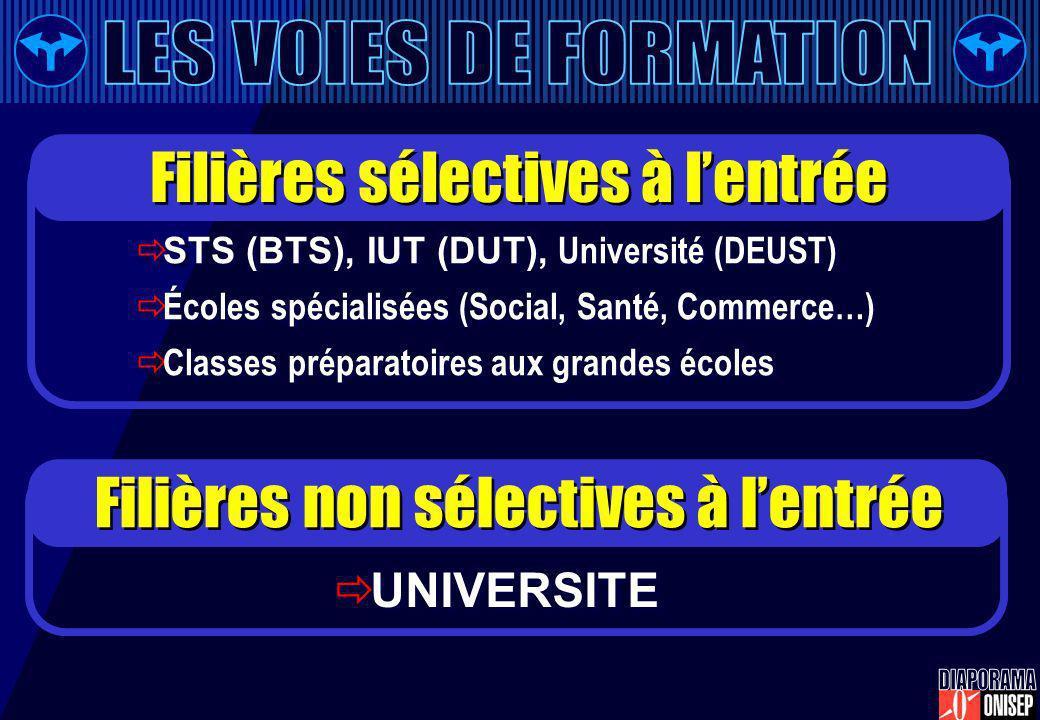 STS (BTS), IUT (DUT), Université (DEUST) Écoles spécialisées (Social, Santé, Commerce…) Classes préparatoires aux grandes écoles STS (BTS), IUT (DUT),