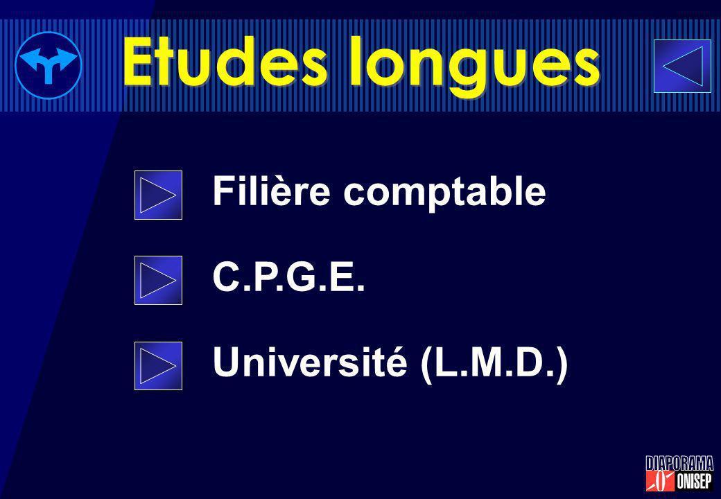 Filière comptable C.P.G.E. Université (L.M.D.) Etudes longues