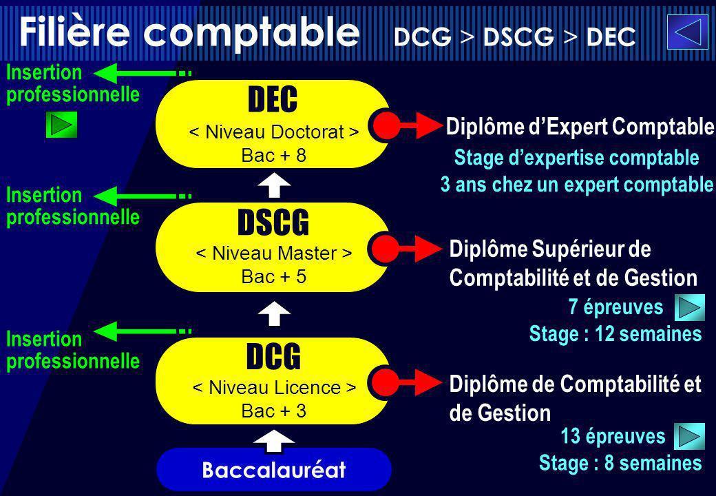 Filière comptable DCG > DSCG > DEC DSCG DEC Stage dexpertise comptable 3 ans chez un expert comptable 7 épreuves Stage : 12 semaines Baccalauréat DCG