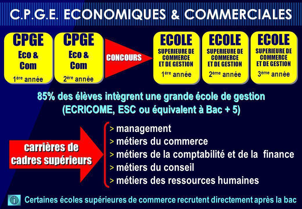 > management > métiers du commerce > métiers de la comptabilité et de la finance > métiers du conseil > métiers des ressources humaines 85% des élèves