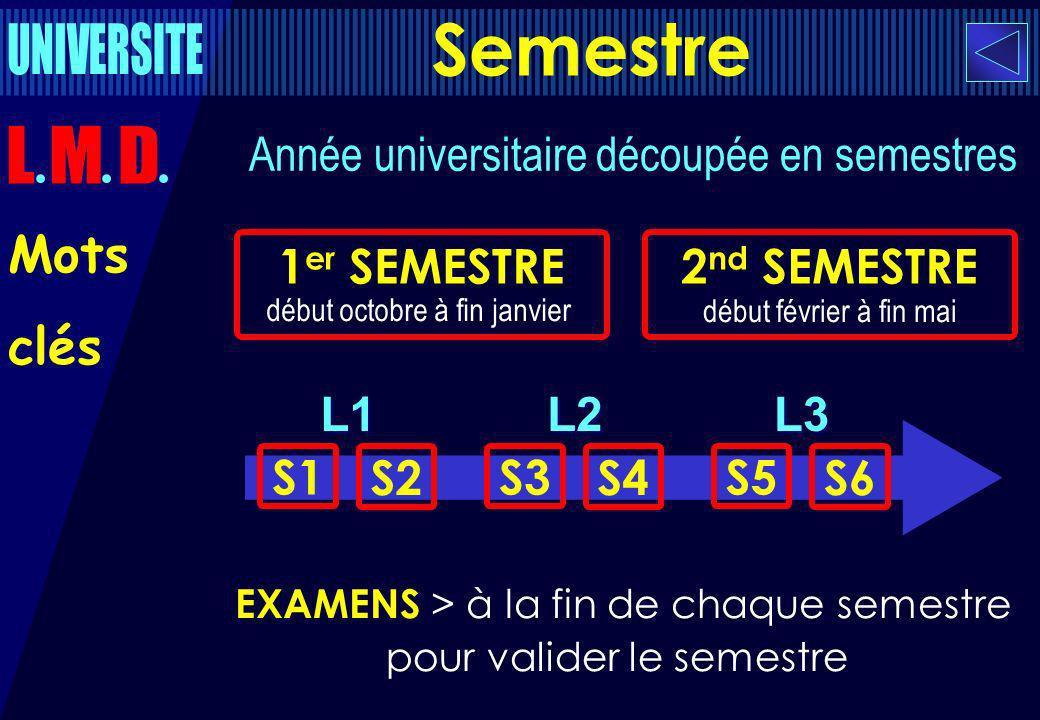 début février à fin mai Année universitaire découpée en semestres 1 er SEMESTRE début octobre à fin janvier 2 nd SEMESTRE EXAMENS > à la fin de chaque