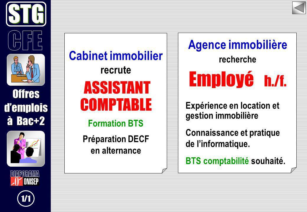 Cabinet immobilier recrute ASSISTANT COMPTABLE Formation BTS Préparation DECF en alternance Agence immobilière recherche Employé h./f. Expérience en l