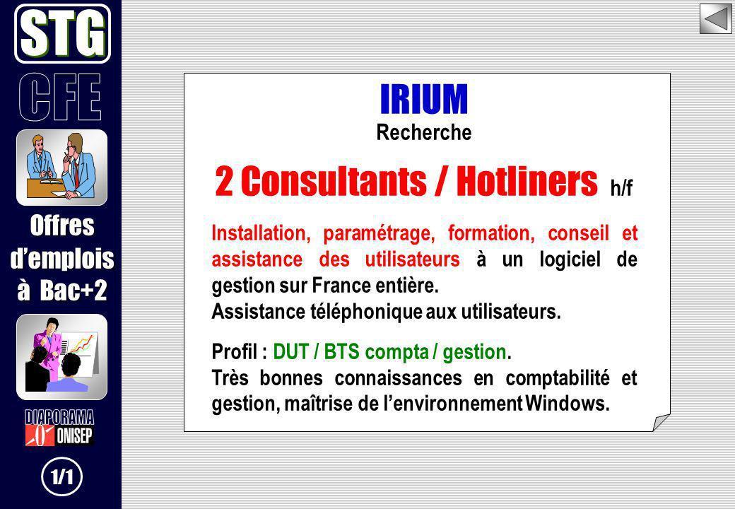 IRIUM Recherche 2 Consultants / Hotliners h/f Installation, paramétrage, formation, conseil et assistance des utilisateurs à un logiciel de gestion su