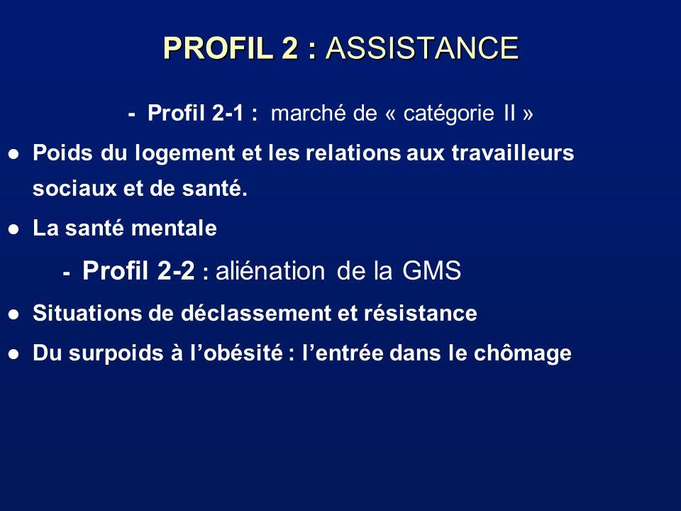 PROFIL 2 : ASSISTANCE - Profil 2-1 : marché de « catégorie II » l Poids du logement et les relations aux travailleurs sociaux et de santé. l La santé