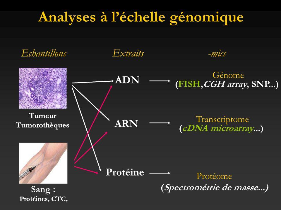Apport de la pharmacogénomique Etablir des profils dexpression (signatures moléculaires) –Caractérisation de sous-types de tumeurs (ex.