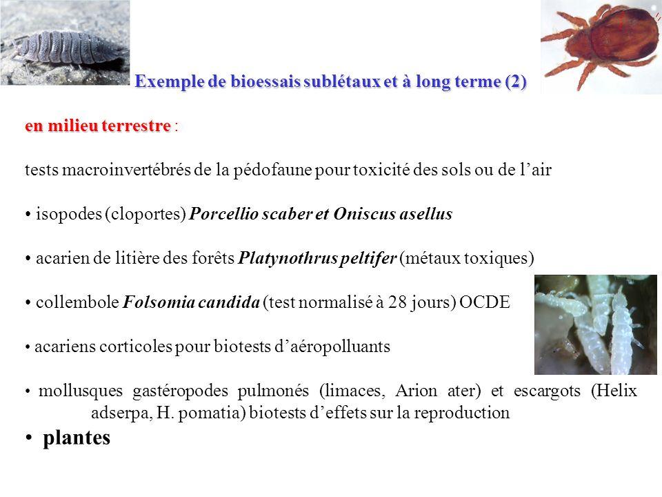 Exemple de bioessais sublétaux et à long terme (2) en milieu terrestre en milieu terrestre : tests macroinvertébrés de la pédofaune pour toxicité des