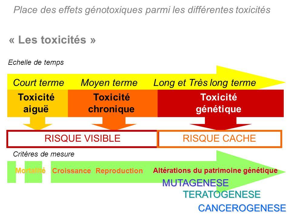« Les toxicités » Echelle de temps Court termeMoyen termeLong et Très long terme Toxicité aiguë Toxicité chronique Toxicité génétique RISQUE VISIBLERI