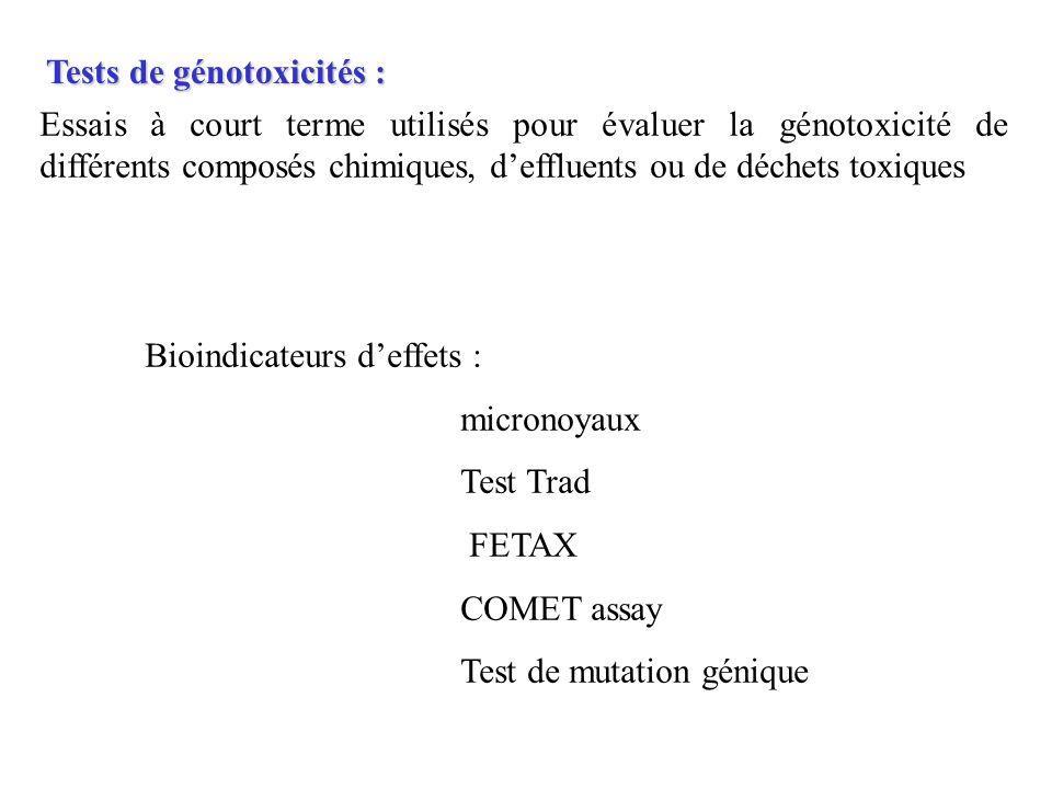 Tests de génotoxicités : Essais à court terme utilisés pour évaluer la génotoxicité de différents composés chimiques, deffluents ou de déchets toxique