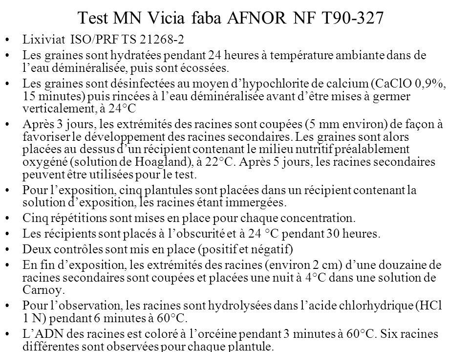 Test MN Vicia faba AFNOR NF T90-327 Lixiviat ISO/PRF TS 21268-2 Les graines sont hydratées pendant 24 heures à température ambiante dans de leau démin
