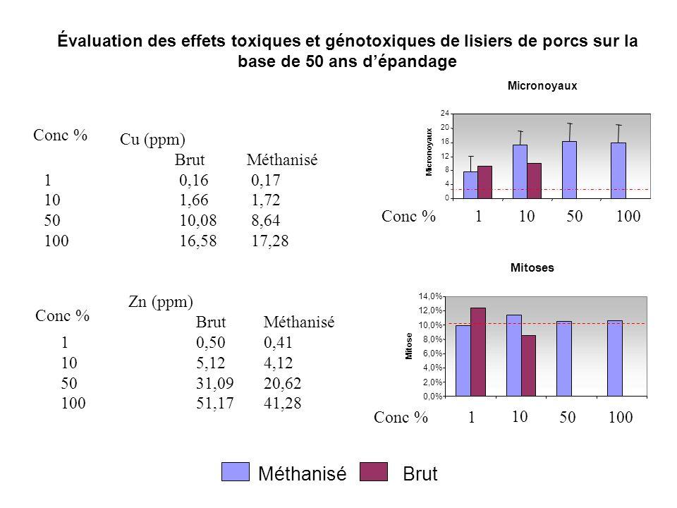 Micronoyaux 0 4 8 12 16 20 24 Évaluation des effets toxiques et génotoxiques de lisiers de porcs sur la base de 50 ans dépandage Micronoyaux Méthanisé