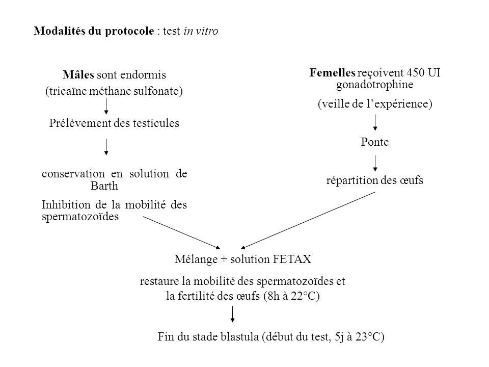 Modalités du protocole : test in vitro Mâles sont endormis (tricaïne méthane sulfonate) Prélèvement des testicules conservation en solution de Barth I