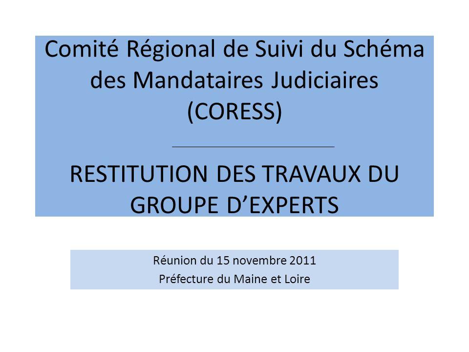 Comité Régional de Suivi du Schéma des Mandataires Judiciaires (CORESS) RESTITUTION DES TRAVAUX DU GROUPE DEXPERTS Réunion du 15 novembre 2011 Préfecture du Maine et Loire
