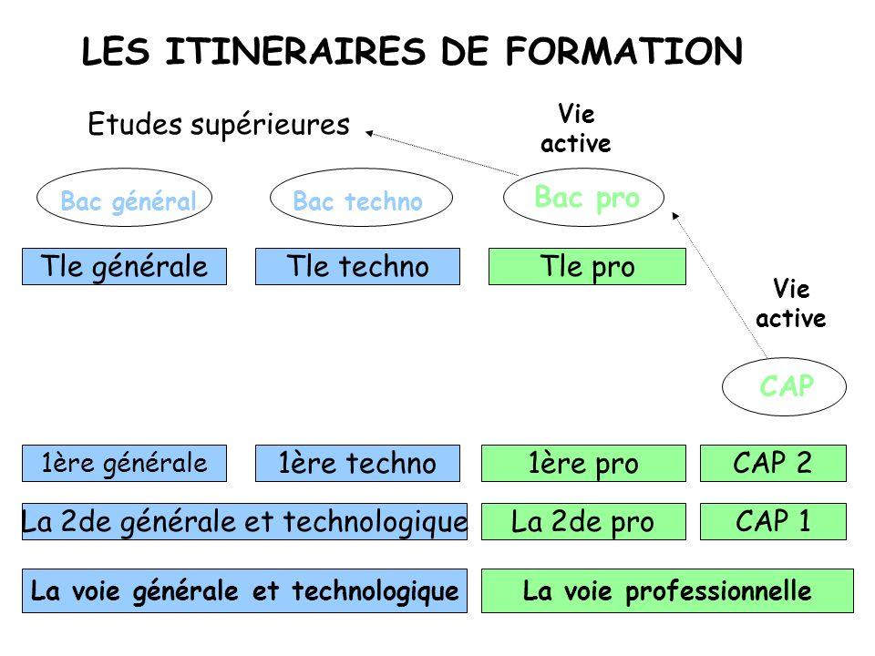 LES OPTIONS FACULTATIVES o Langue vivante 2 !!.