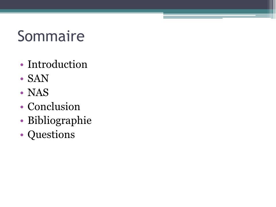 Sommaire Introduction SAN NAS Conclusion Bibliographie Questions