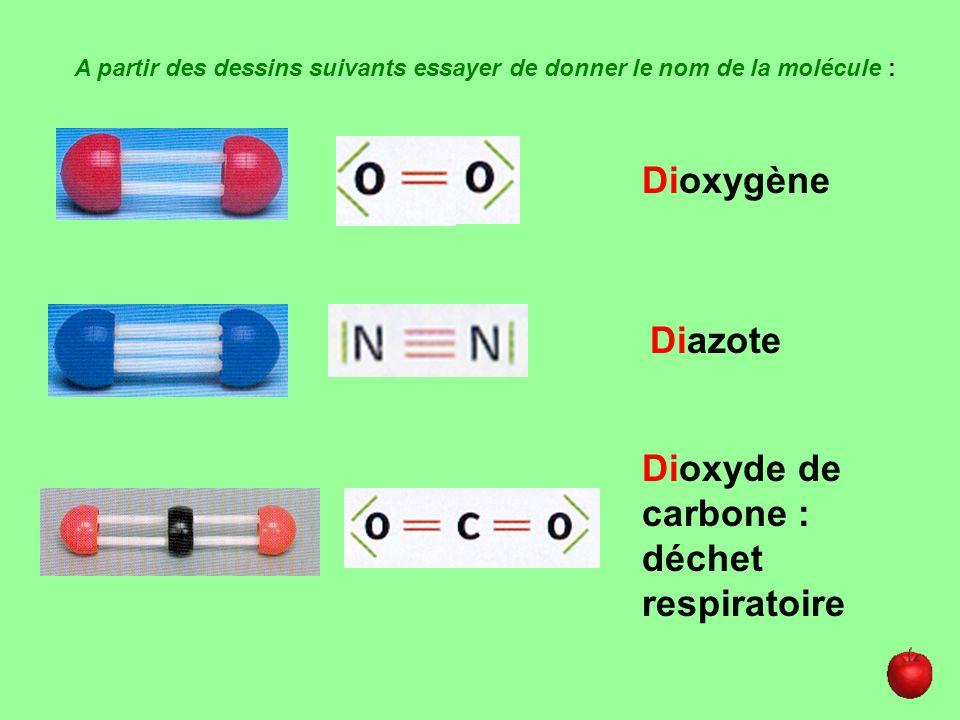 A partir des dessins suivants essayer de donner le nom de la molécule : Dioxygène Diazote Dioxyde de carbone : déchet respiratoire