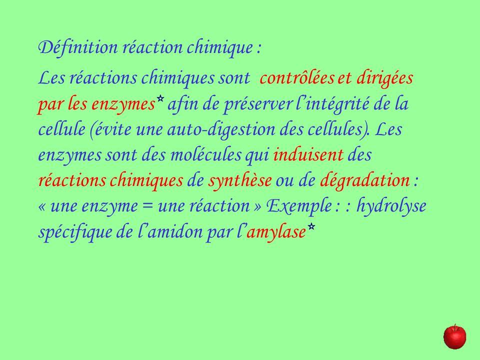 Définition réaction chimique : Les réactions chimiques sont contrôlées et dirigées par les enzymes* afin de préserver lintégrité de la cellule (évite