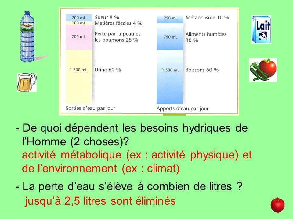 - De quoi dépendent les besoins hydriques de lHomme (2 choses)? activité métabolique (ex : activité physique) et de lenvironnement (ex : climat) - La