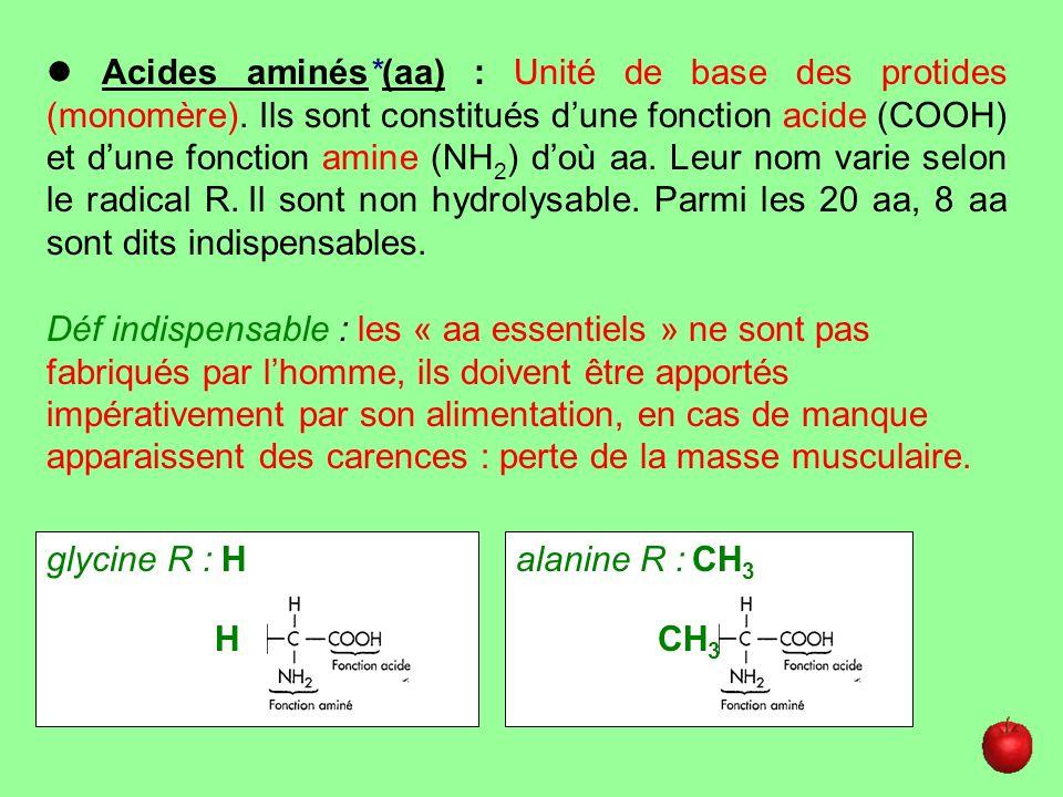 Acides aminés*(aa) : Unité de base des protides (monomère). Ils sont constitués dune fonction acide (COOH) et dune fonction amine (NH 2 ) doù aa. Leur