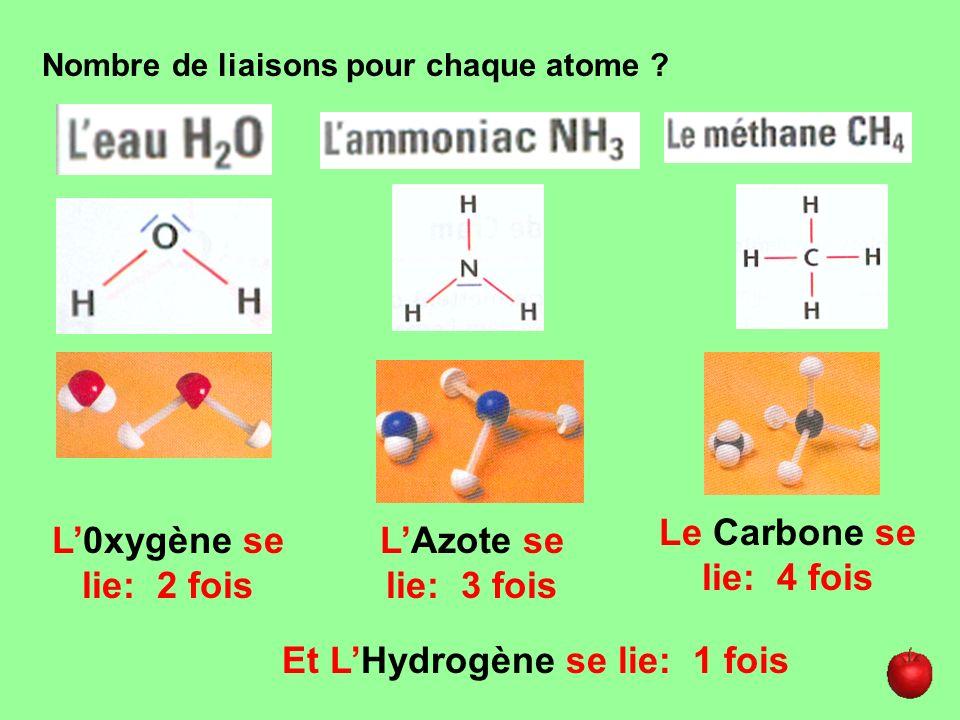 Nombre de liaisons pour chaque atome ? L0xygène se lie: 2 fois LAzote se lie: 3 fois Le Carbone se lie: 4 fois Et LHydrogène se lie: 1 fois
